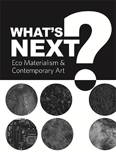 What's Next? by Linda Weintraub