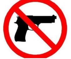Gun-big